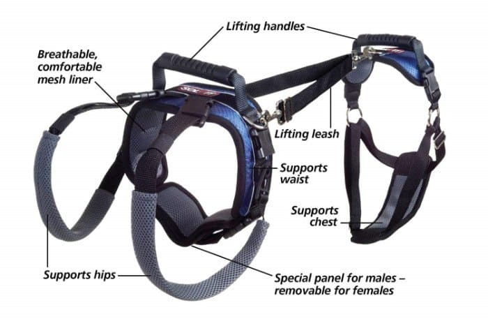 Full Body Lifting Harness
