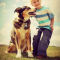 What Can You Give Dogs For Pain – Are Human Medications Safe?