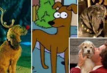 best dog names from movies and tv shows