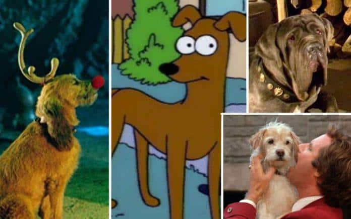 48 Best Dog Names From Movies & TV (Famous Male & Female Dogs)