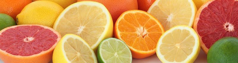 Can rats eat citrus?