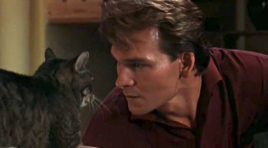 Floyd the Cat from the movie Ghost