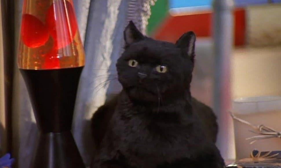 Salem from Sabrina