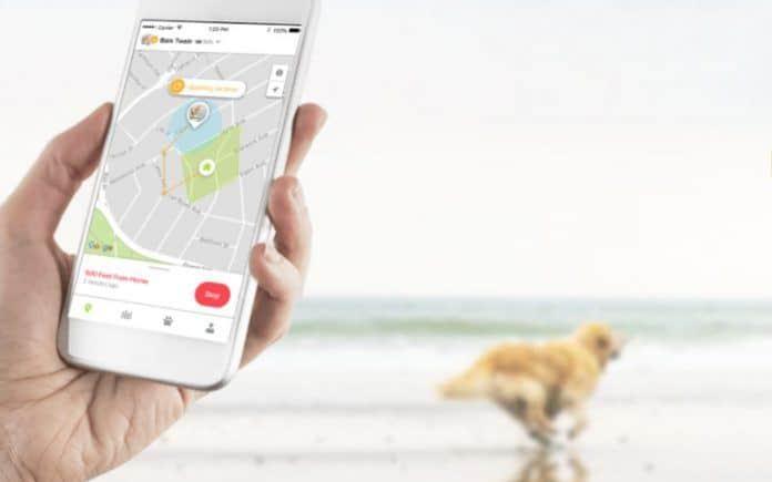 Whistle 3 GPS Dog Tracker