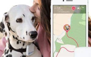 Tractive GPS Pet Tracker Review – Read This Before Buying A Smart Collar!