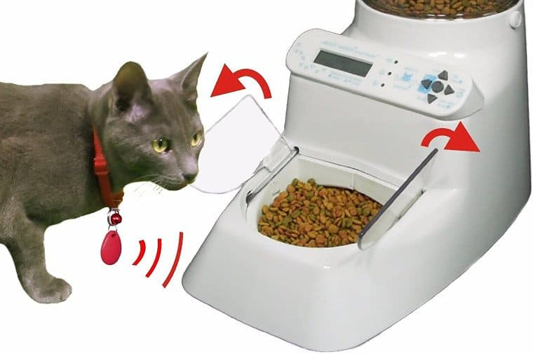 Wireless Whiskers Automatic Pet Feeder Review